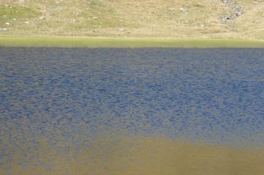 Озеро Догяска