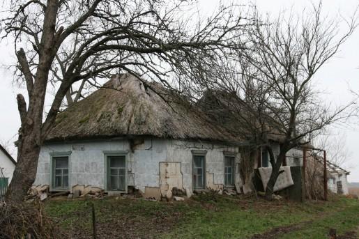 Камышовые крыши в селе Горошино