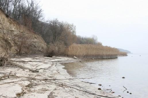 Песчаный пляж. По следам на камышах виден нормальный уровень воды в Кременчугском водохранилище.