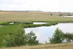 Место впадения реки Рыбаково в Рось