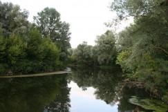 Рось в нижнем течении