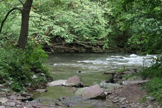 Место впадения Русиловской речушки в Стрипу