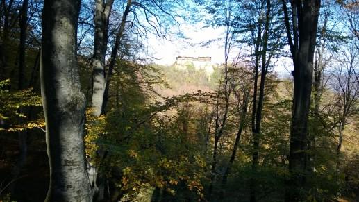 Вид на скалу и монастырь с грунтовой дороги