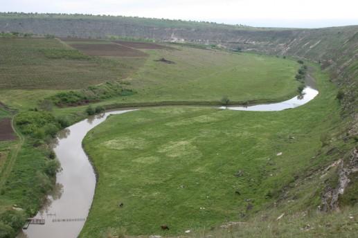 Долина реки Реут