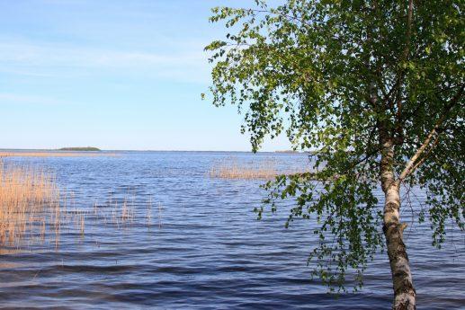 Озеро Свитязь около залива Бужня