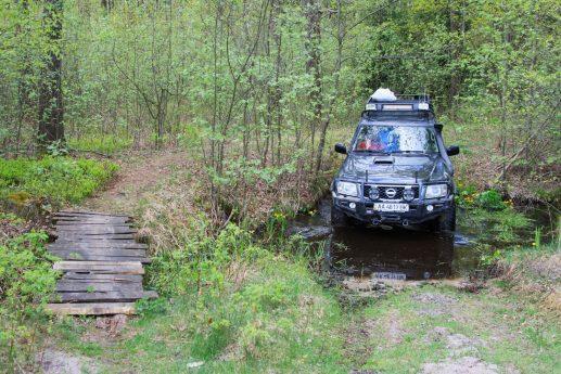 По дороге между озерами Островское и Луки