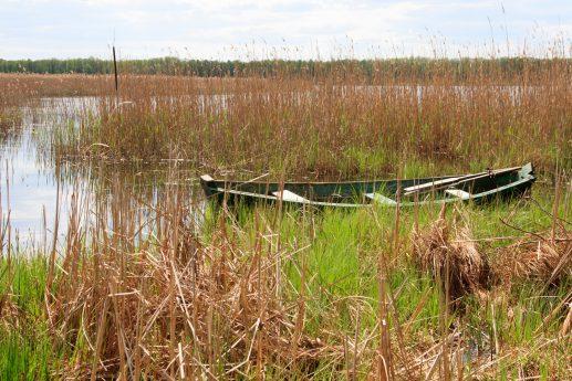 На севере озера Луки