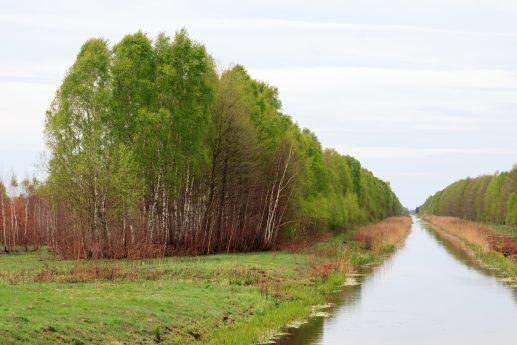 Где-то в верховьях реки Припять